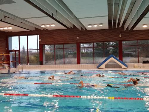 Le bassin des nageurs